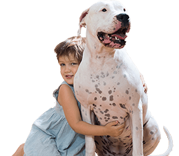 dog-and-child-mobile2